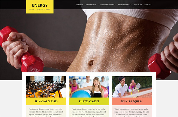 Energy Business & Fitness WP Theme