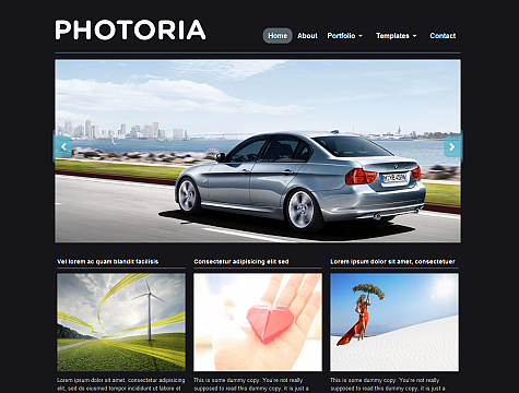 http://www.wpzoom.com/images/screenshots/photoria/photoria.png
