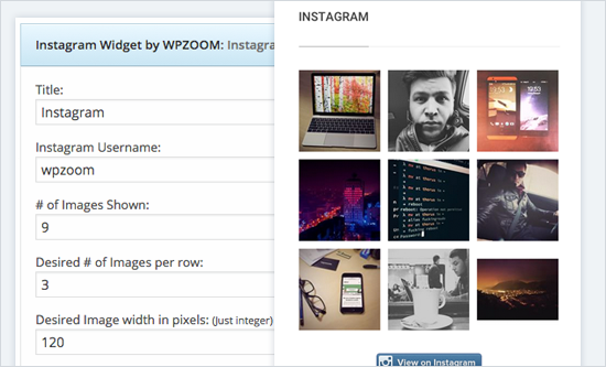 Screenshot of the Instagram Widget