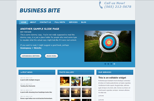 Business Bite Theme