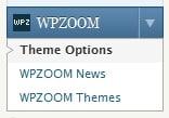 wpzoomoptions