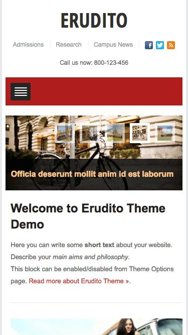 erudito-mobile