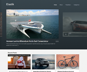 WordPress Theme: Elastik