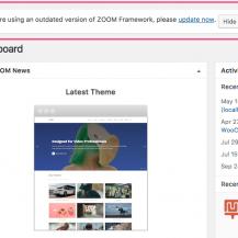 Using the ZOOM Framework automatic updates