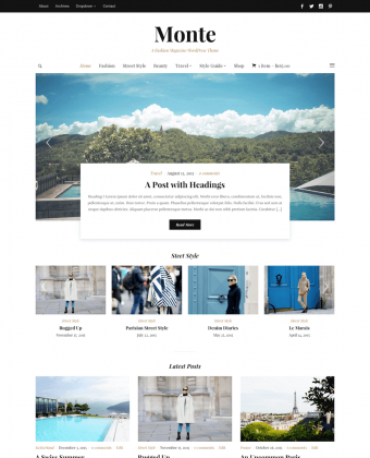 WordPress Theme: Monte