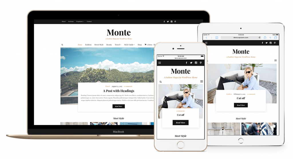 monte-theme-responsive (1)