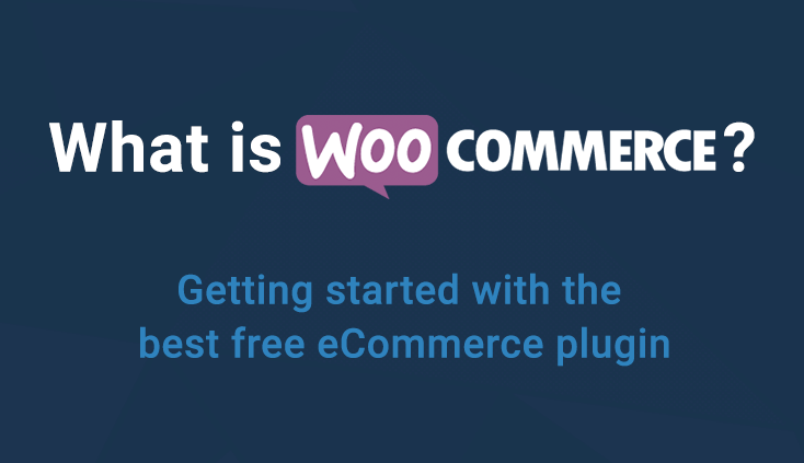 What is Woocommerce plugin ad