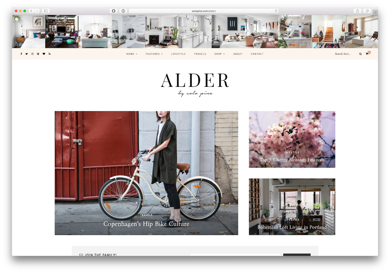 Screenshot of the Alder food blog WordPress theme