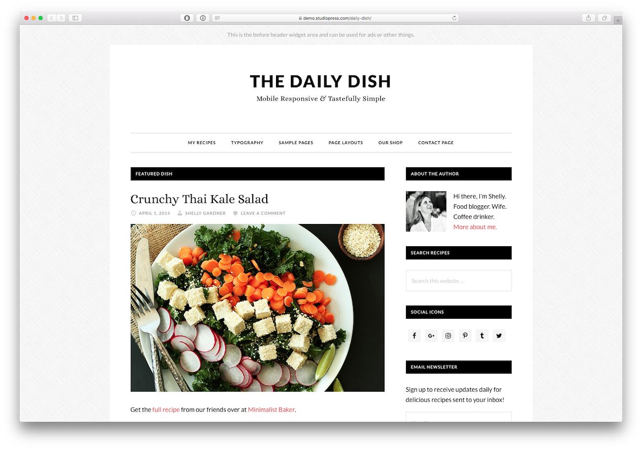 Screenshot of the Daily Dish food blog WordPress theme
