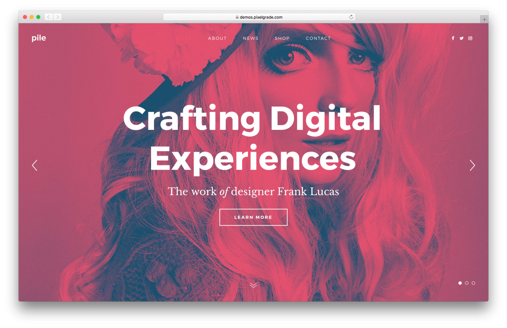 PILE WordPress portfolio theme screenshot