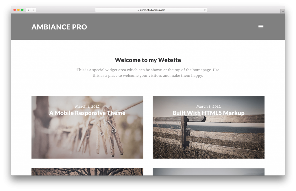 Ambiance Pro portfolio WordPress theme screenshot