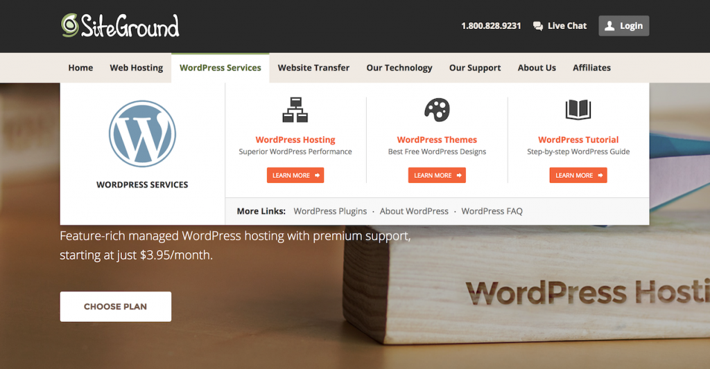 WordPress hosting.
