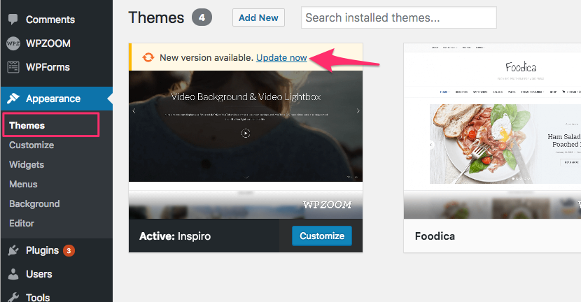 Image shows a screenshot of how to enable automatic theme updates for WPZoom WordPress themes